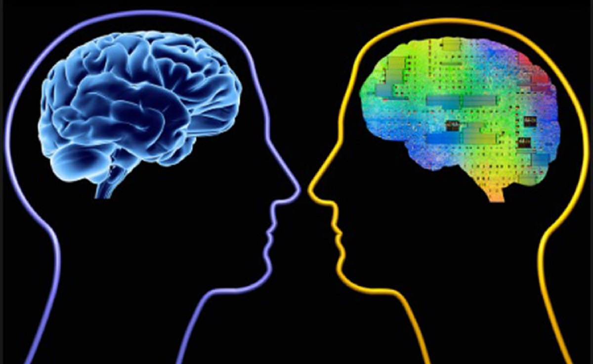 تکامل-با-ایجاد-مغز