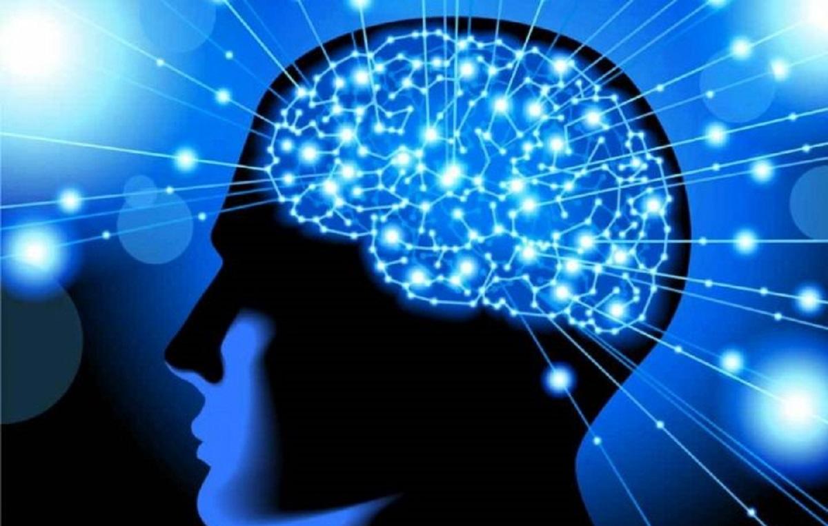 سطوح-تعیین-کننده-ی-مغز