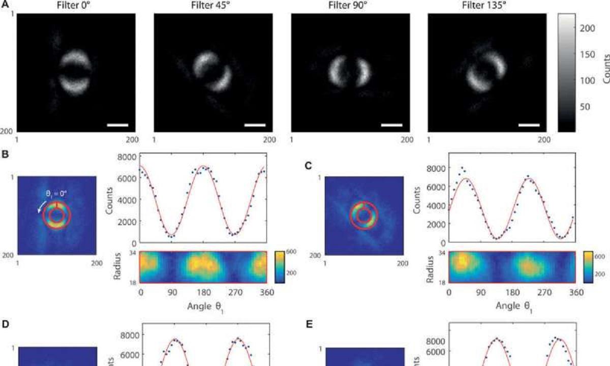دانشمندان-نخستین-تصویر-از-گیر-کوانتومی-را-به-نمایش-می-گذارند
