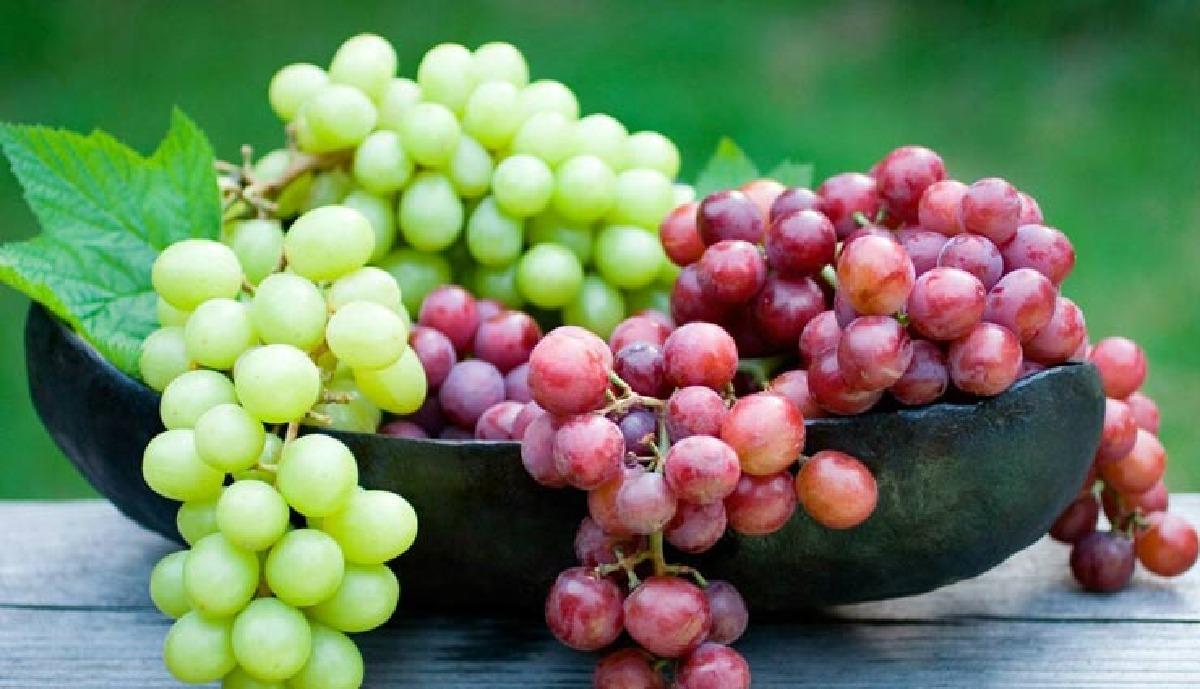 ۱۷-خاصیت-درمانی-انگور