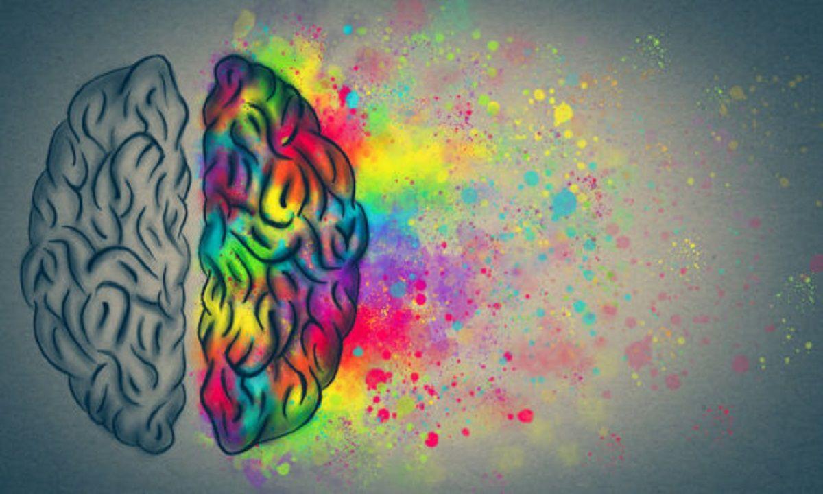 منشأ-توهم-در-مغز