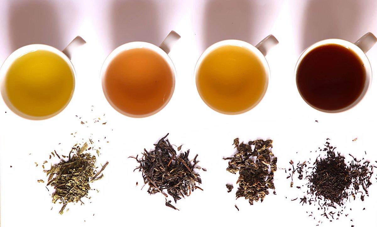 انواع-چای-گیاهی-برای-لاغری