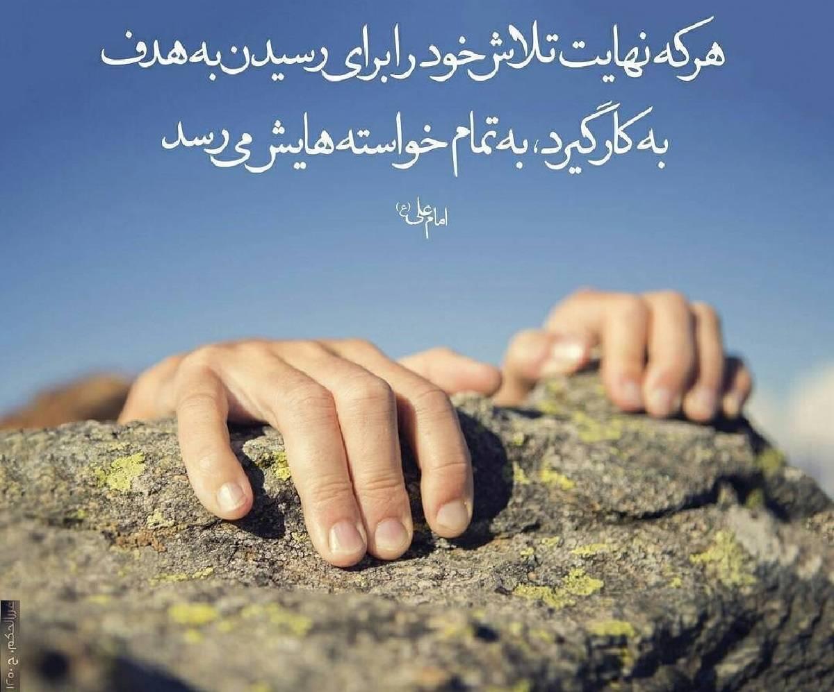 مجموعه-ای-از-احادیث-امام-علی-ع
