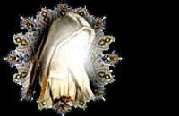 حجاب و عفاف در قرآن کريم