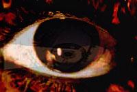 http://rasekhoon.net/_WebsiteData/Article/ArticleImages/1/1388/ordibehesht/12/75017.jpg