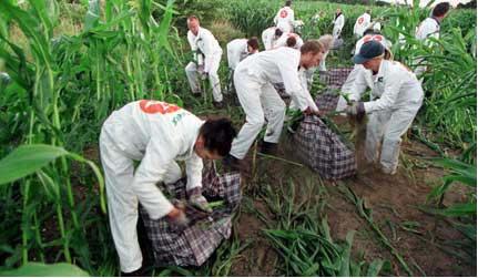 كار برد فناوری هسته ای دردفع آ فات گیاهی نریتور