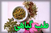 طب گیاهی، کهن ترین شیوه درمان