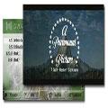 Viking Informatics DVD player V1.25