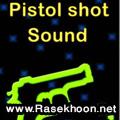 صداهای مختلف تفنگ