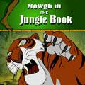 بازی Jungle Book جاوا