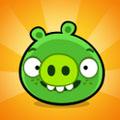 بازی جذاب و فکری Bad Piggies v1.0.0
