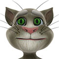 گربه سخنگو Talking Tom Cat v2.5