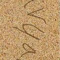 نوشتن متن رو ساحل دریا Write in sand v1.00