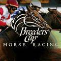 بازی مسابقات اسب سواری Breeders Cup Casino Horse R