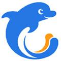 جعبه لایتنر دلفین