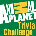 چالش های سیاره حیوانات
