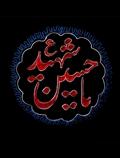 یا حسین شهید (ع)