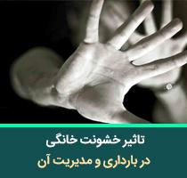 تاثیر خشونت خانگی در بارداری و مدیریت آن