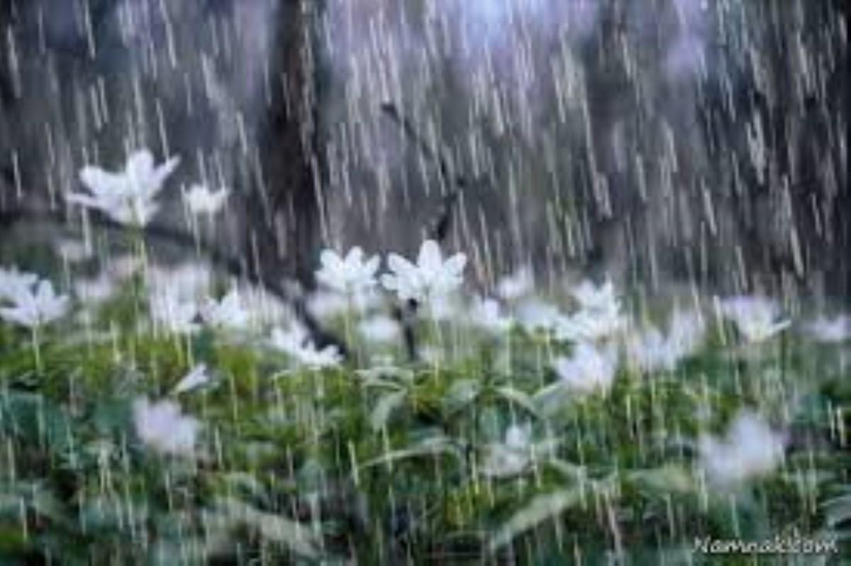 باران تصمیمها را تازه خواهد کرد، باران شو