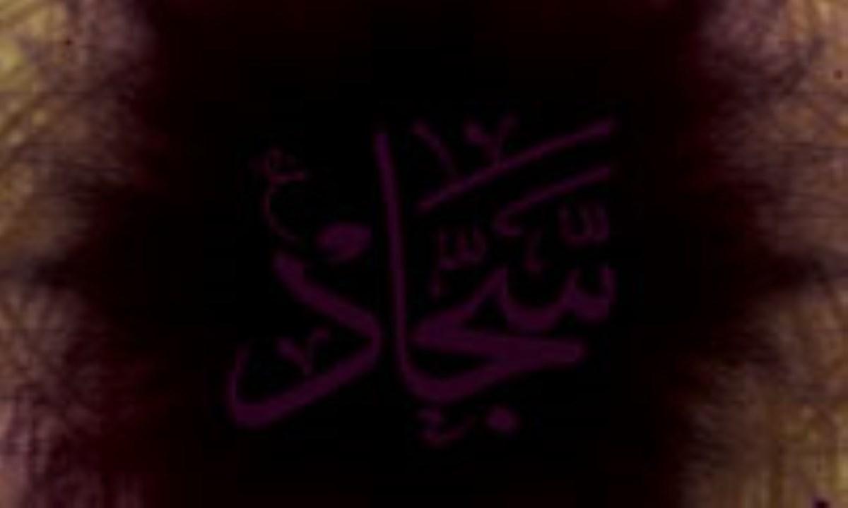 امام سجاد (ع) فرهنگ ساز عاشورا