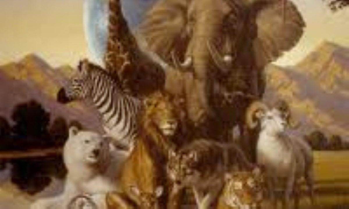 10 اشتباه رایج درباره حیوانات