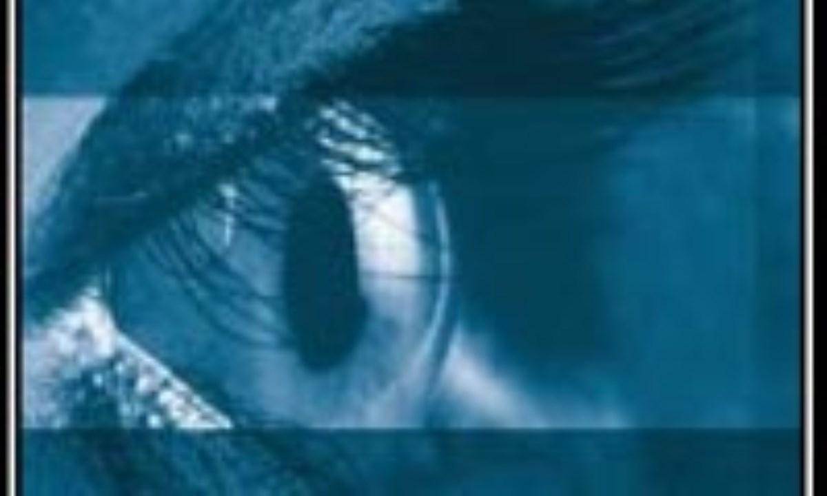 حسی به نام «بینایی»