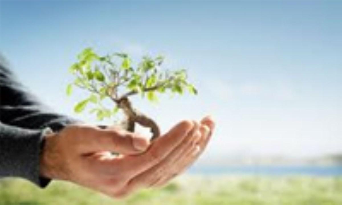 درآمدى بر فقه محیط زیست