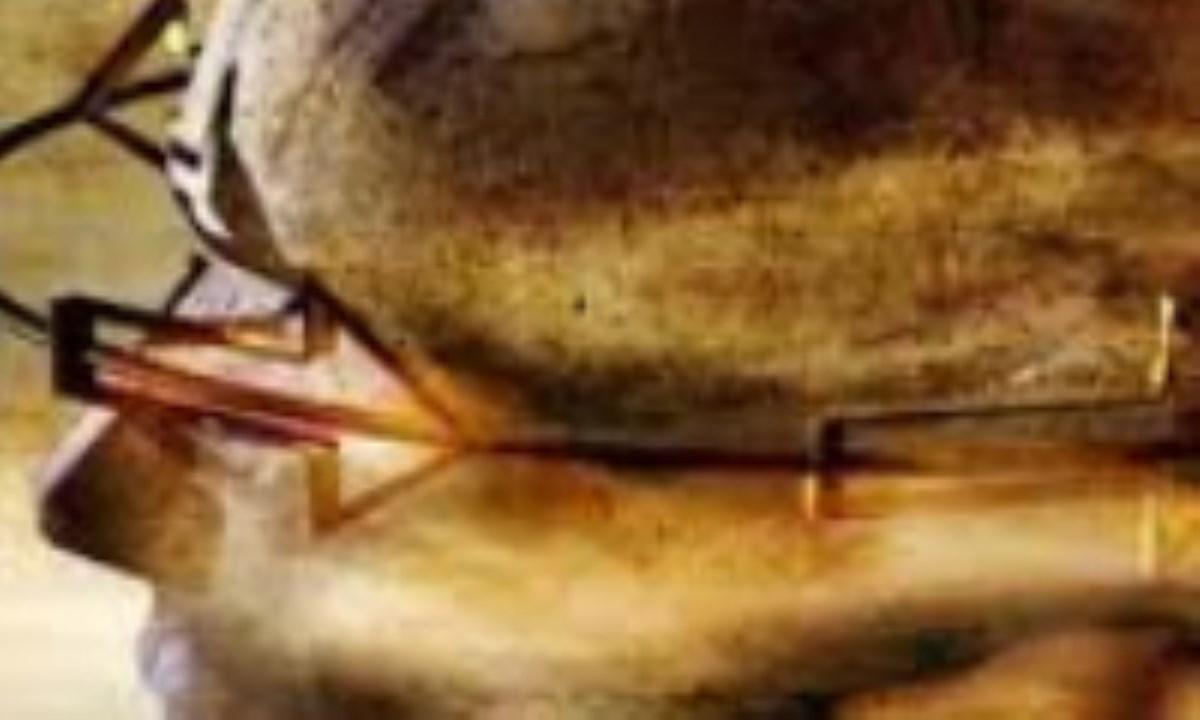 خروج از ره عقل و فضلیت (6)