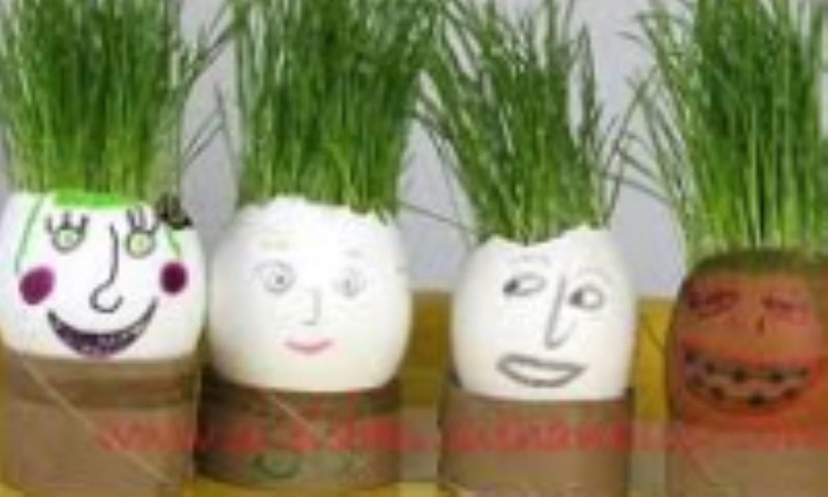 سبزه عید را خودتان سبز کنید!