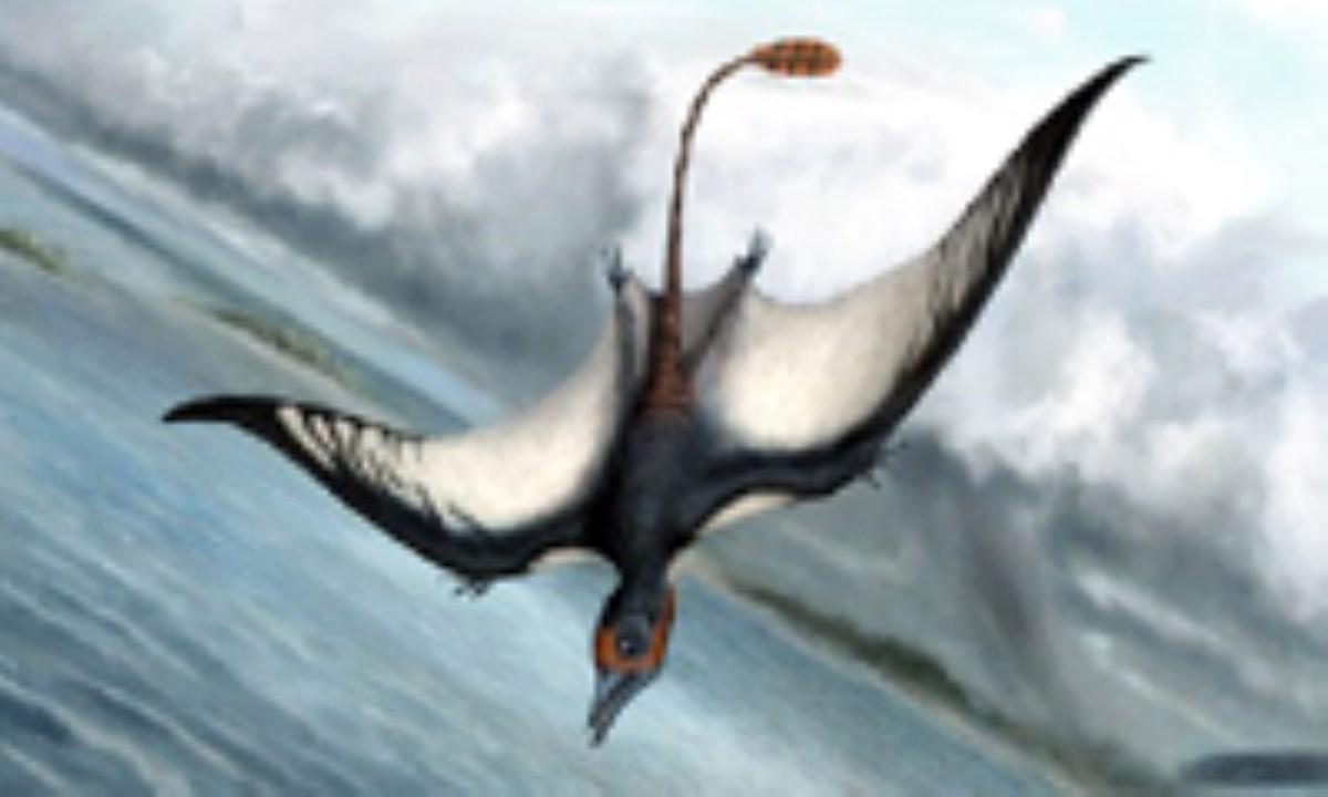 جانور پرندهی جدید ژوراسیک