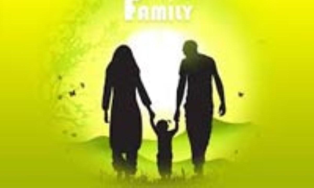 نقد و بررسي ماده ي 24 لايحه ي حمايت از خانواده