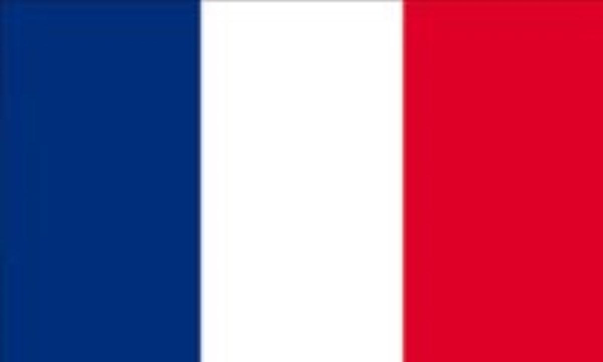 فرانسه: FRANCE (.fr)
