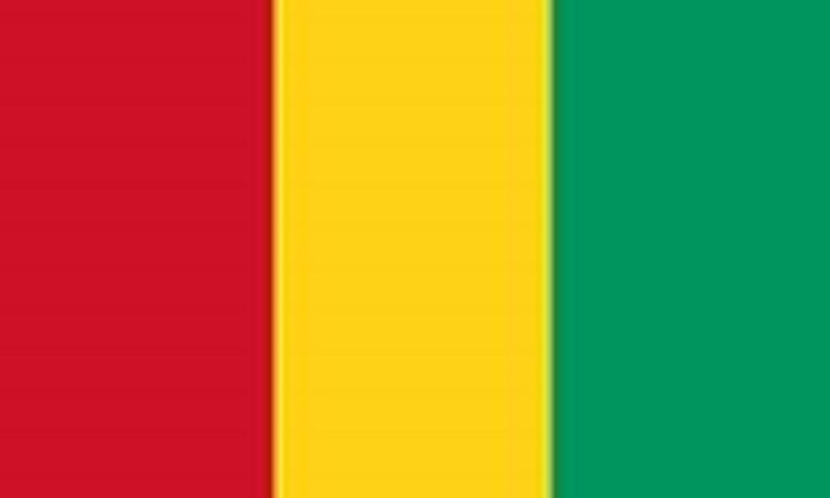 گينه: GUINEA