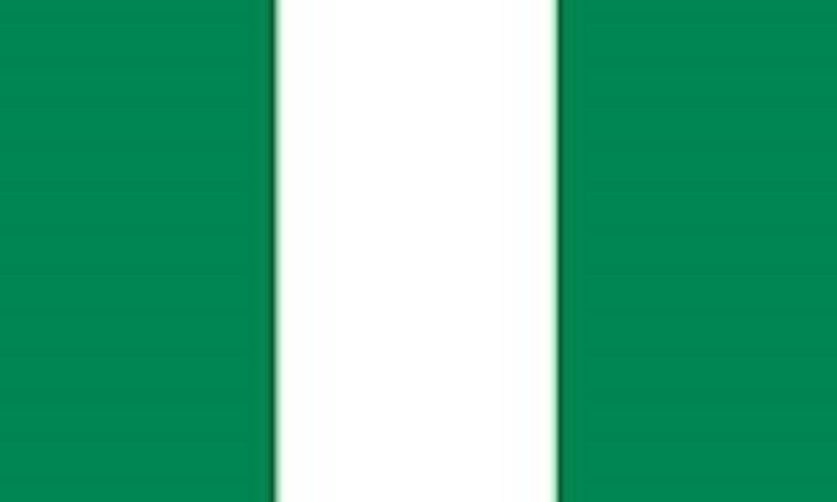 نيجريه: NIGERIA(.ng)