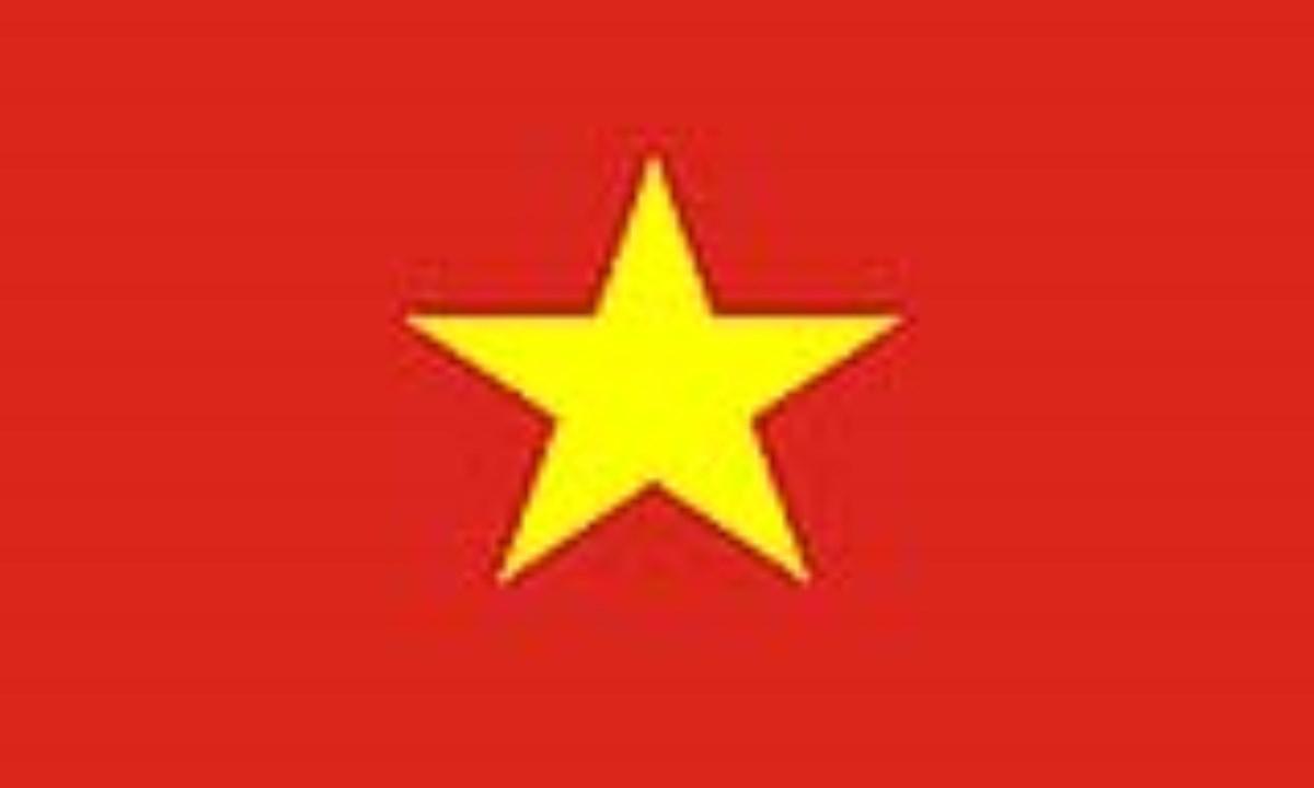 ويتنام: VIETNAM(.vn)
