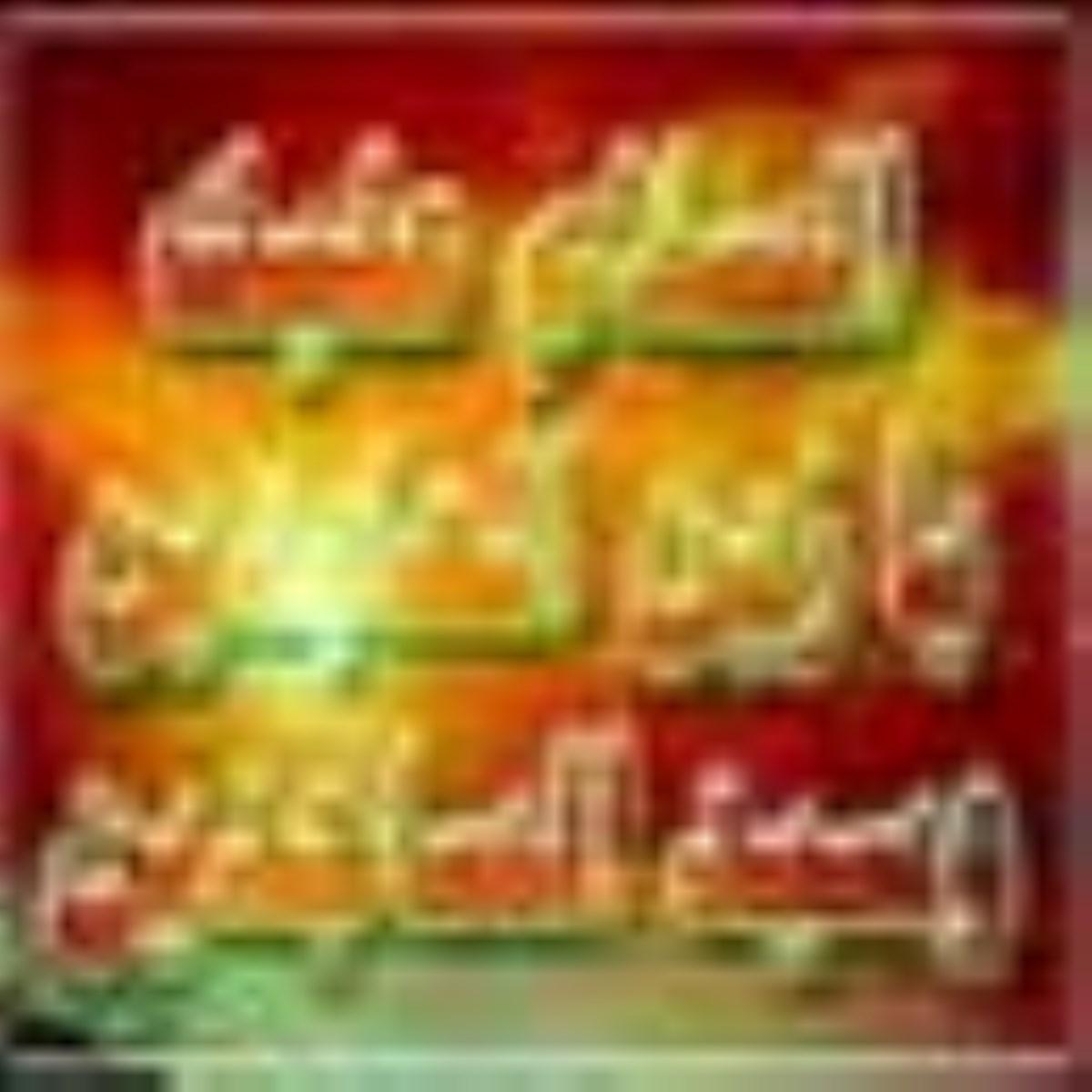 سيره حضرت امام زين العابدين عليه السلام