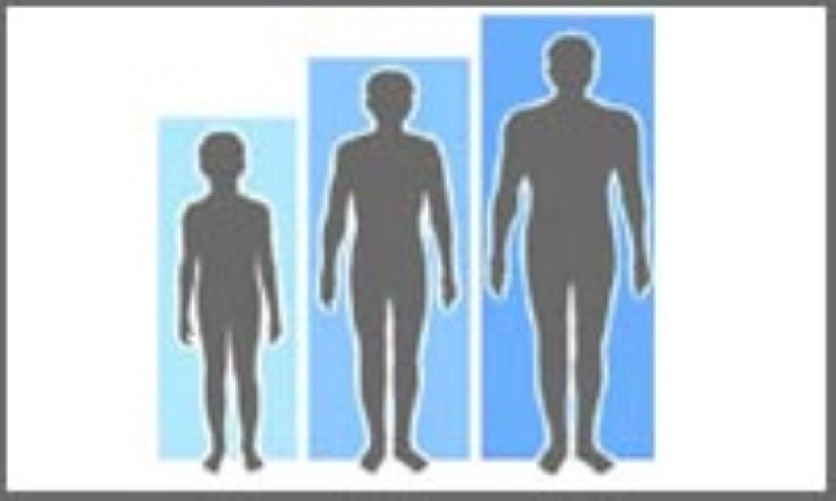 زمینه ژنتیکی رشد
