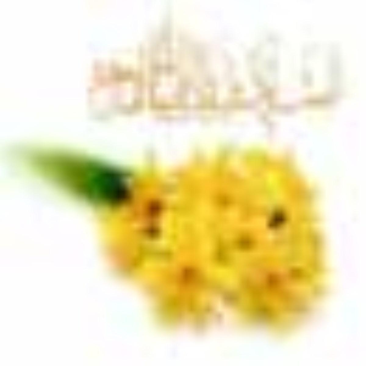نرگس، گلی که بوی مهدی(عج) میدهد