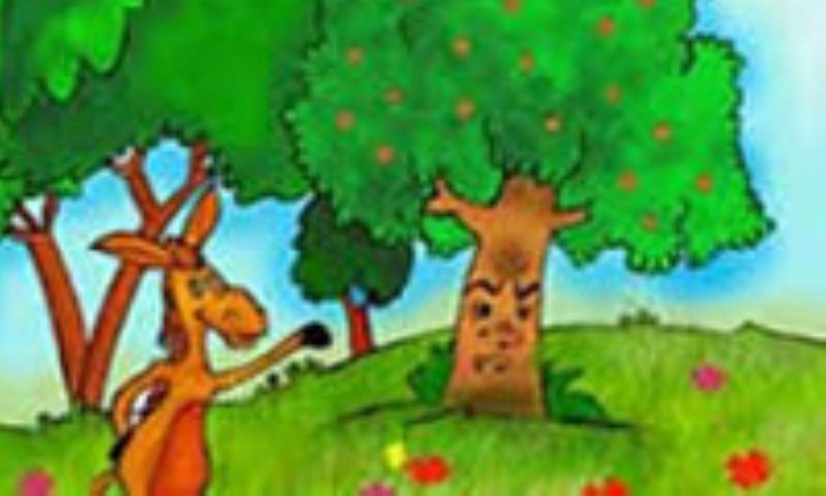 درخت مراد