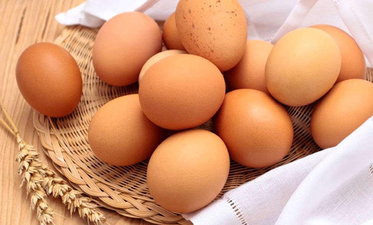 آنچه باید درباره مصرف تخم مرغ بدانید