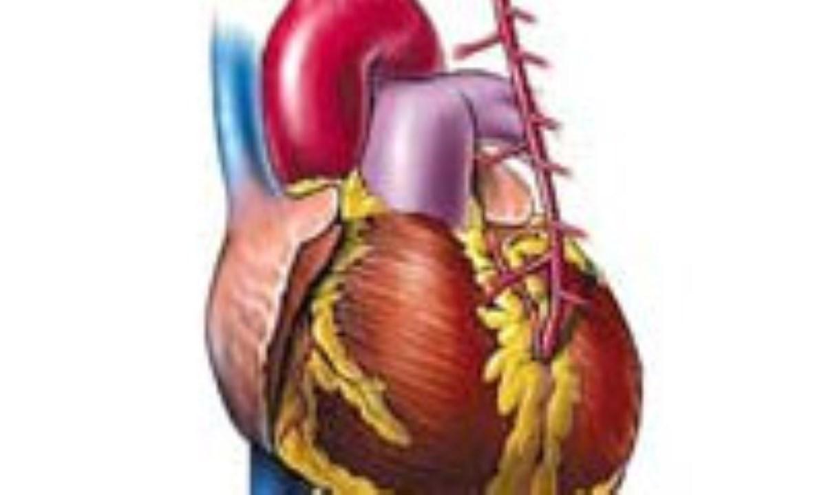 راز داشتن يك قلب سالم