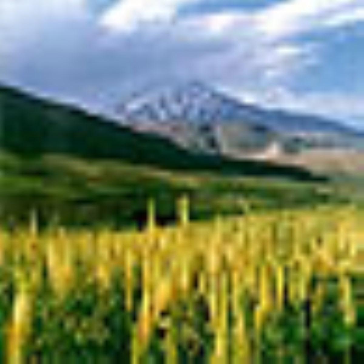 دماوند خاستگاه اساطیری ایران زمین