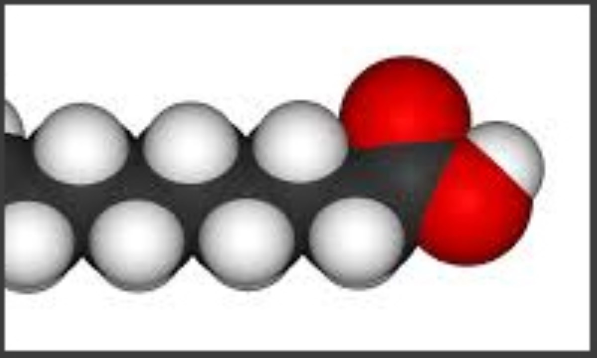 پالمیتیک-اسید
