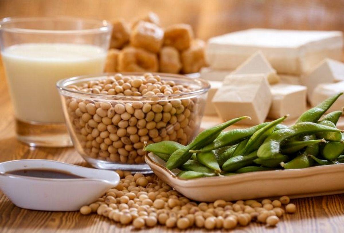 دانستنی های مهم راجع به فیتواستروژن ها