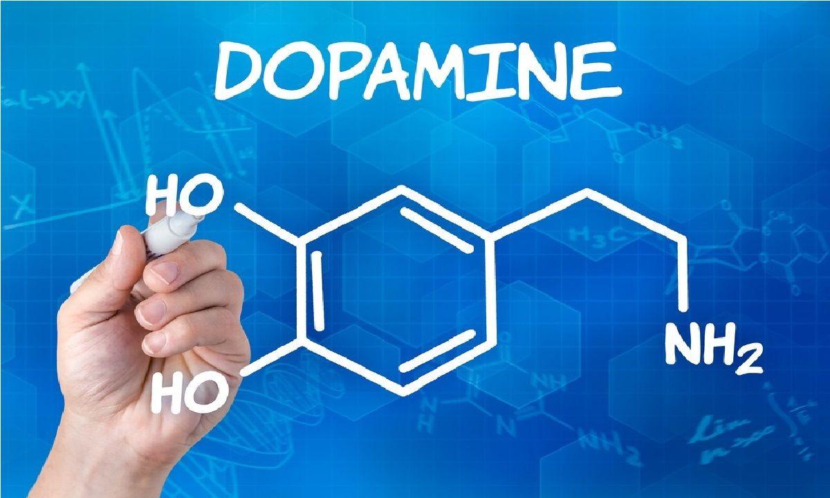 راه کار هایی برای بالا بردن دوپامین مغز