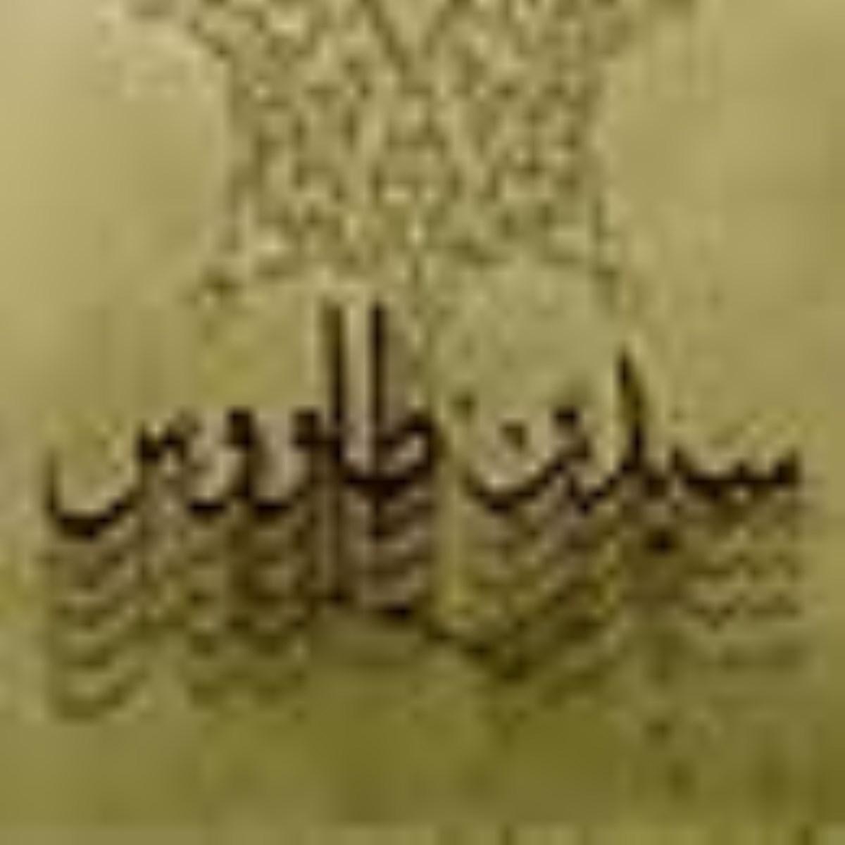 سید بن طاووس اعجوبه تشیع