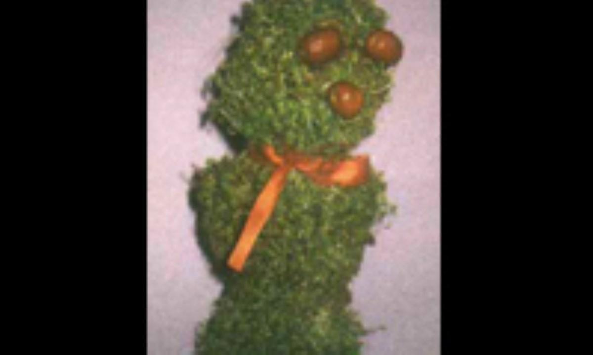 سبزه به شکل عروسک