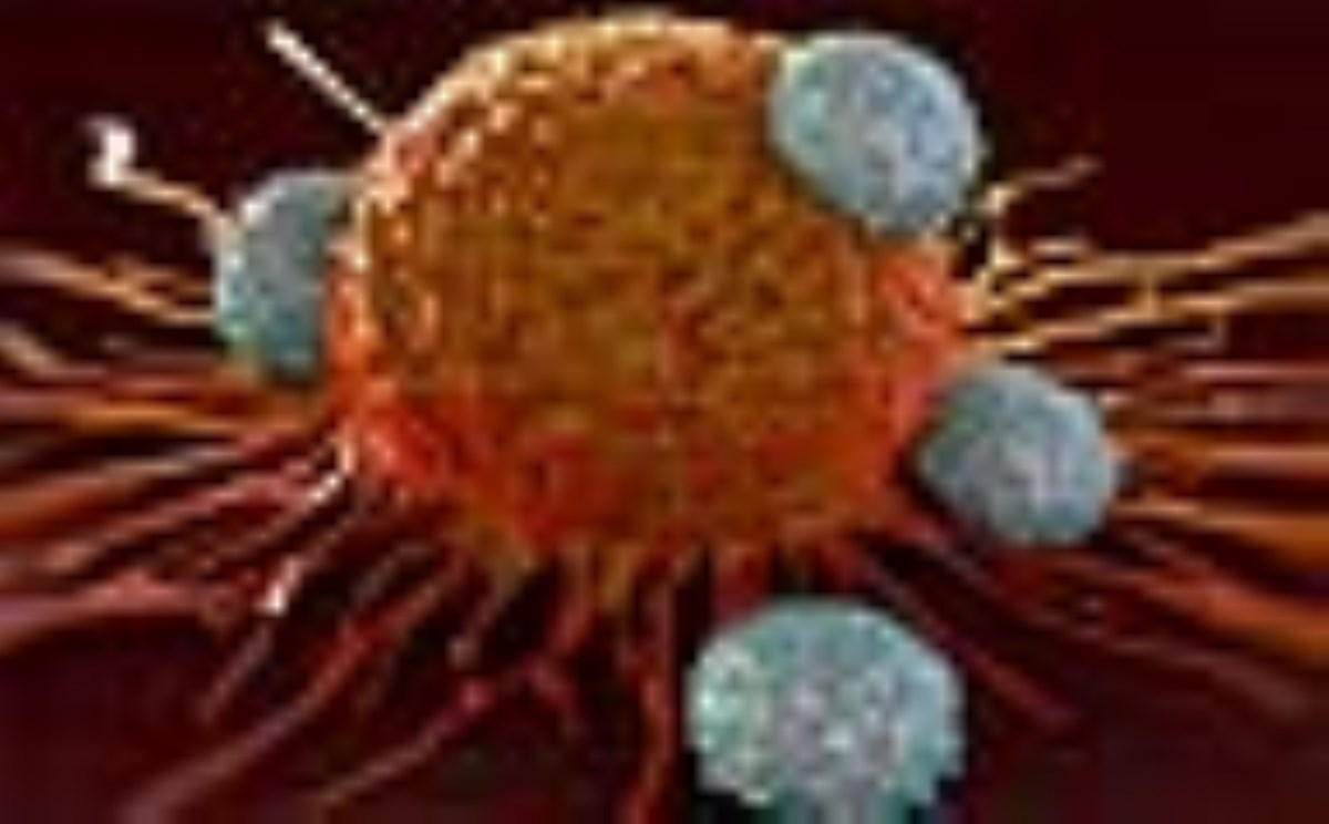 بررسی سرطان در طی جراحی