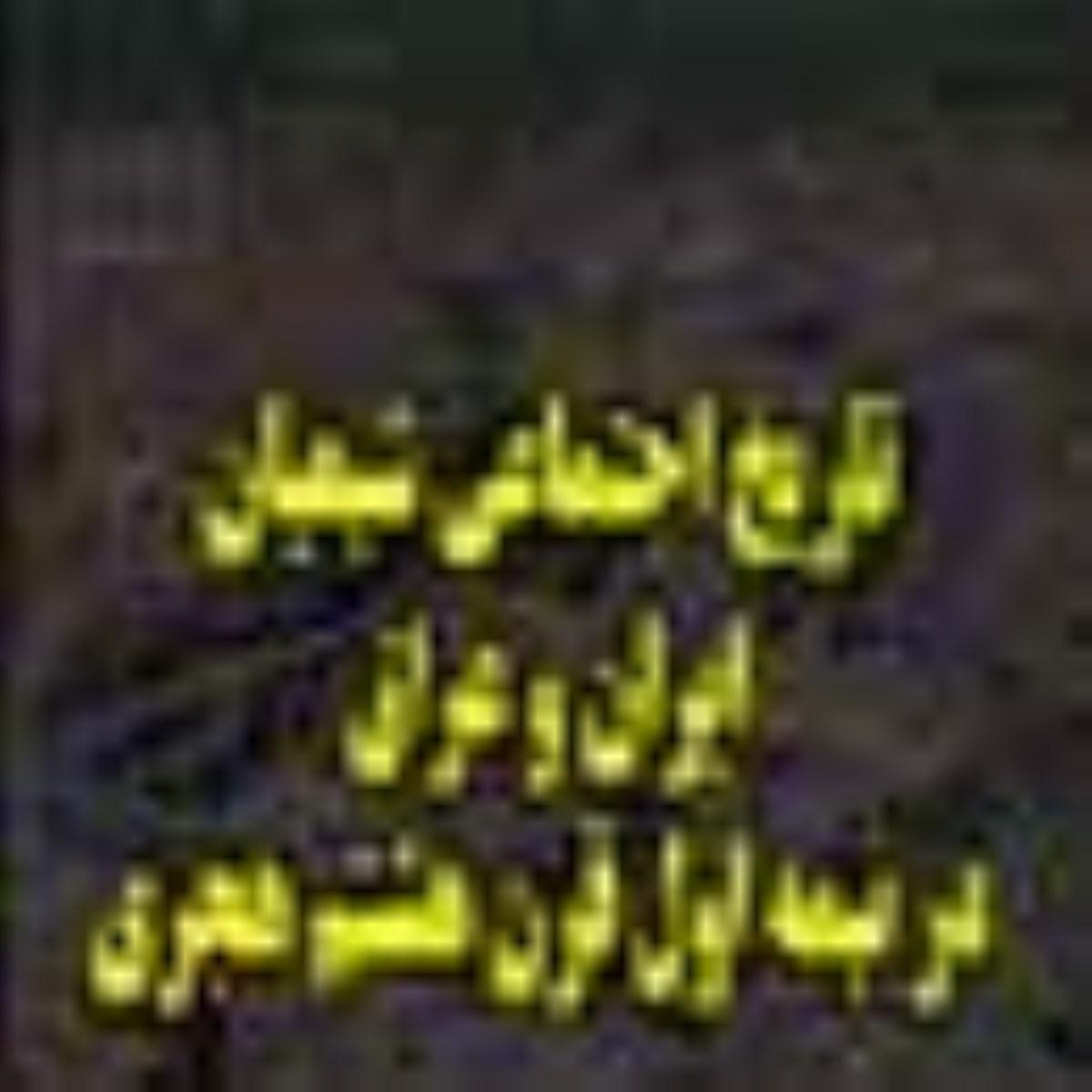 تاريخ اجتماعى شيعيان ايران و عراق در نيمه اول قرن هشتم هجرى