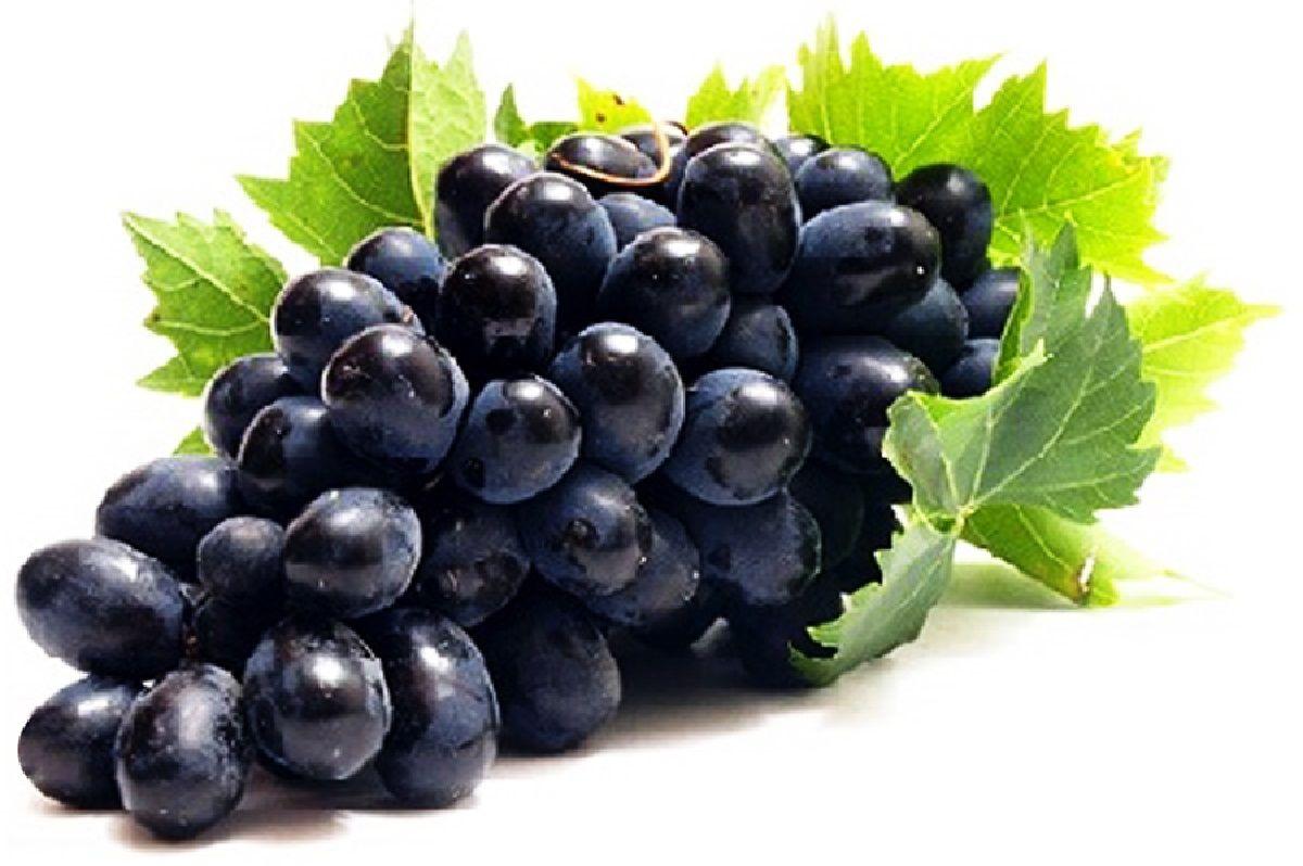 آموزش تهیه انواع دسر با انگور